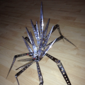 spider21