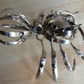 spider23